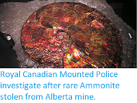 https://sciencythoughts.blogspot.com/2019/07/royal-canadian-mounted-police.html