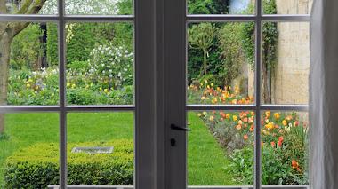 Hola primavera, bienvenida al jardín