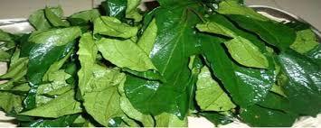 10 Health Benefits Of Pumpkin Leaves (Ugu)
