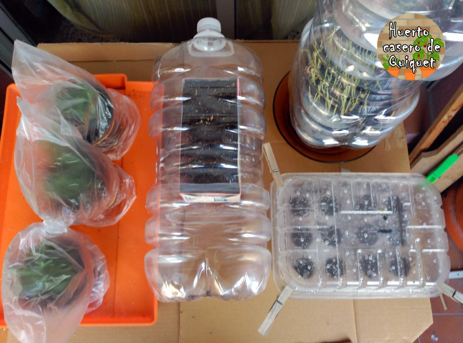 Huerto casero de quiquet como hacer peque os invernaderos for Como realizar un vivero