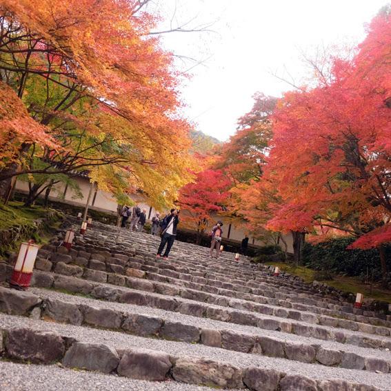 【京都】嵐山二尊院