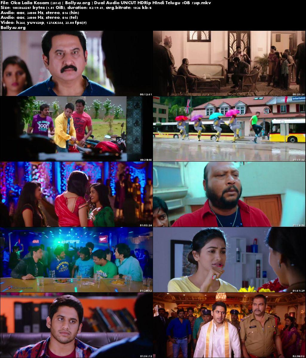 Oka Laila Kosam 2014 HDRip 1Gb Hindi Dubbed Dual Audio 720p Download