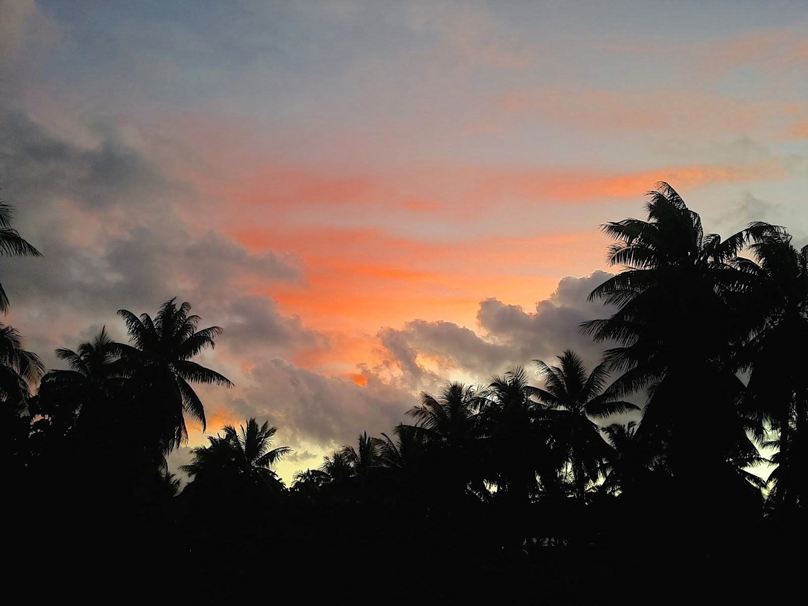 Tikehau Tahiti island French Polynesia pacific ocean sunset palm trees www.lexieblush.co.uk