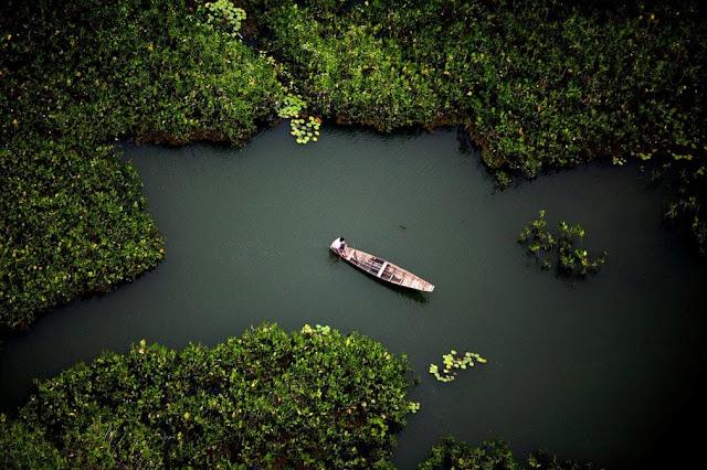 """Các nghiên cứu chỉ ra rừng Amazon đã xuất hiện khoảng 10.000 năm trước. Cho đến giờ, nơi này vẫn còn tồn tại nhiều bí ẩn với giới khoa học. Một số giả thuyết cho rằng rừng Amazon là một """"kế hoạch lỗi"""" của người dân bộ lạc Amazonia khi xưa. Họ thử nghiệm trồng trọt tại vùng Amazon trù phú nhưng không kiểm soát được tốc độ phát triển của các loài cây. Điều này biến vùng Amazon ngập nước thành cánh rừng xanh, rậm rạp như bây giờ."""