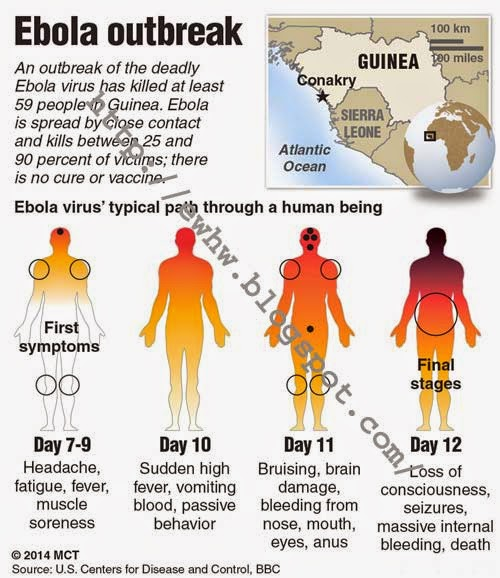 eWhat How Why: Facts About Ebola Virus Disease