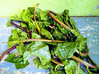 Malabar spinach is also known as basella alba, which is a vine with sort stems and thick heart shaped leaves.