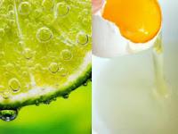 Cara Menghilangkan Komedo Dengan Putih Telur Dan Jeruk Nipis