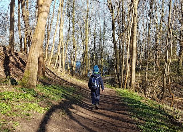 Küsten-Spaziergänge rund um Kiel, Teil 2: Der Ölberg in Mönkeberg. Kleine Wege führen durch den Wald in Küstennähe, die Kinder spannend finden.