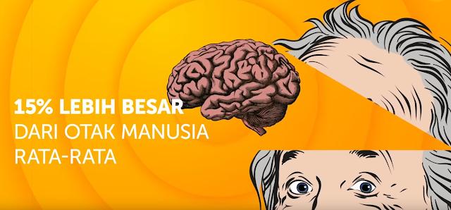 Para peneliti Kanada menemukan otak Albert Einstein ukurannya 15% lebih besar dari ukuran otak rata-rata manusia