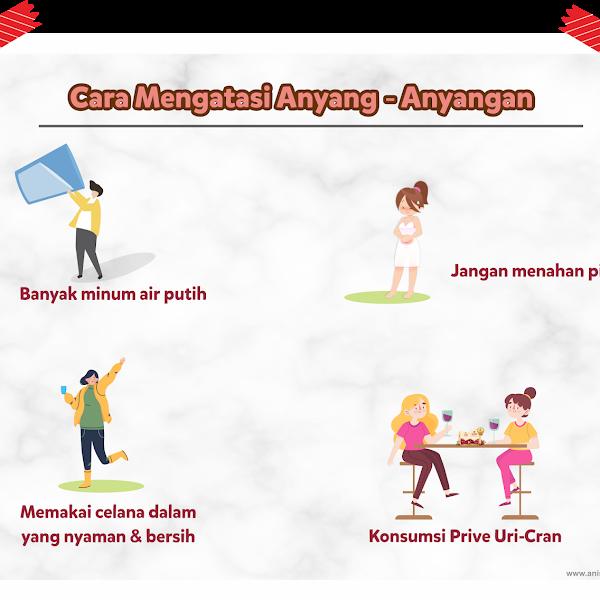 Bebas Beraktivitas Tanpa Drama Anyang-Anyangan dengan Prive Uni-Cran (Review)