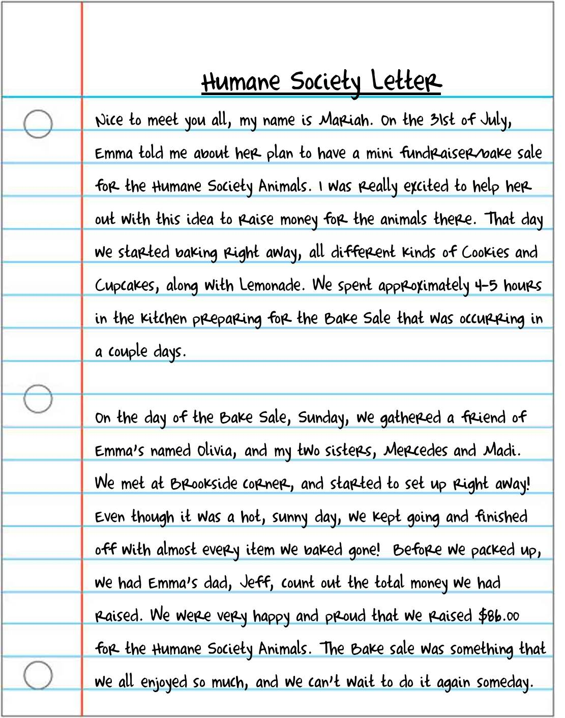 Essay about cat animal control
