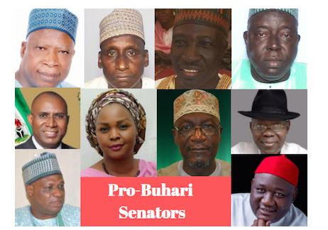 Order of elections: Pro-Buhari Senators face one year suspension (DETAILS)