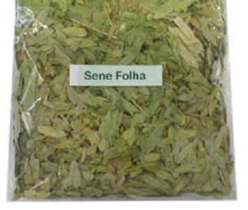 Tudo o que você precisa saber sobre o chá de sene (Benefícios, contra-indicações, como fazer e tomar o chá de sene)