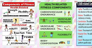 PHYSICAL FITNESS (IMs in PE)