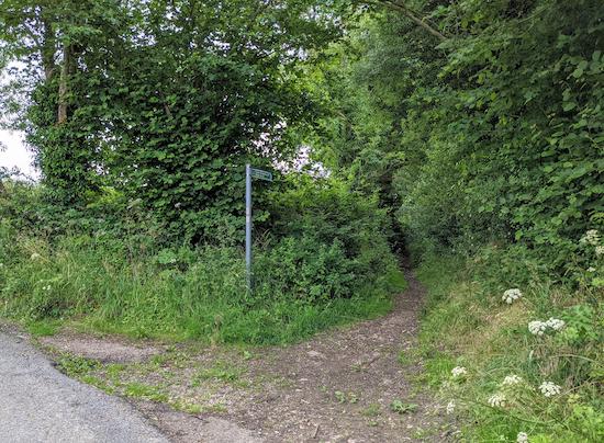 Great Gaddesden bridleway 39 heading SW off Cupid Green Lane