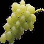 grapes in spanish, fruit in Spanish, orange in Spanish, banana in Spanish, blueberry in Spanish, passion fruit in Spanish