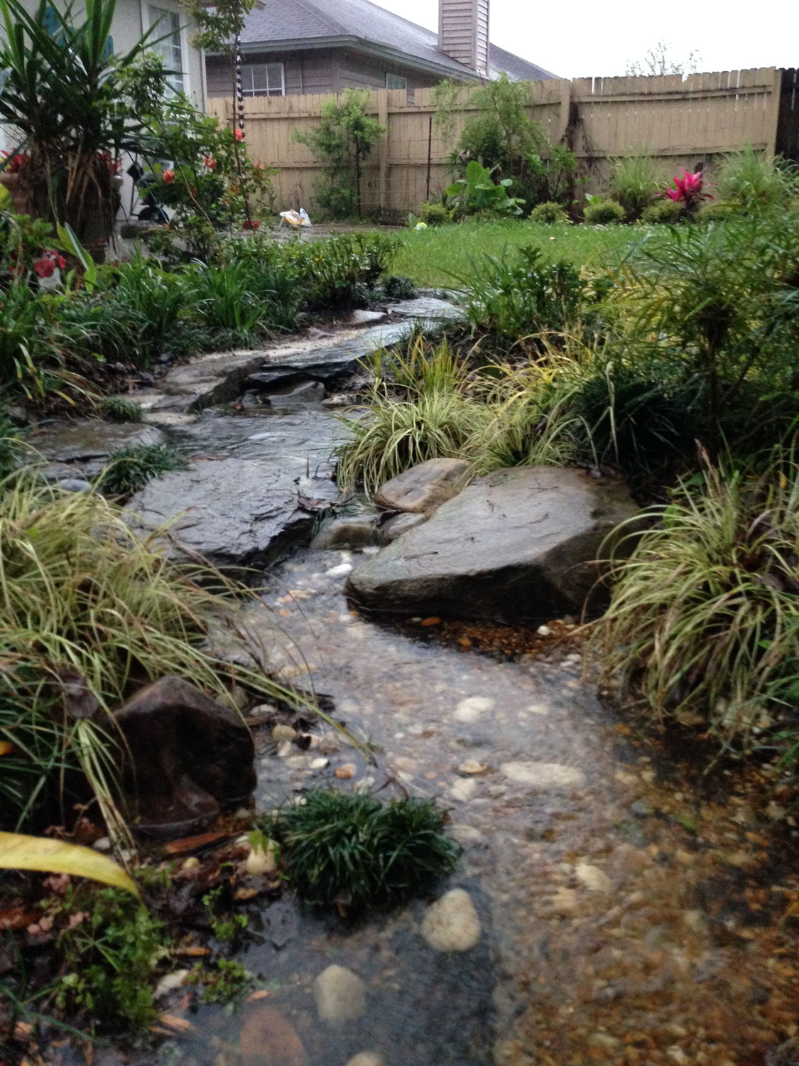 The Rainforest Garden How to Design a Dry Creek Bed 10 Tips
