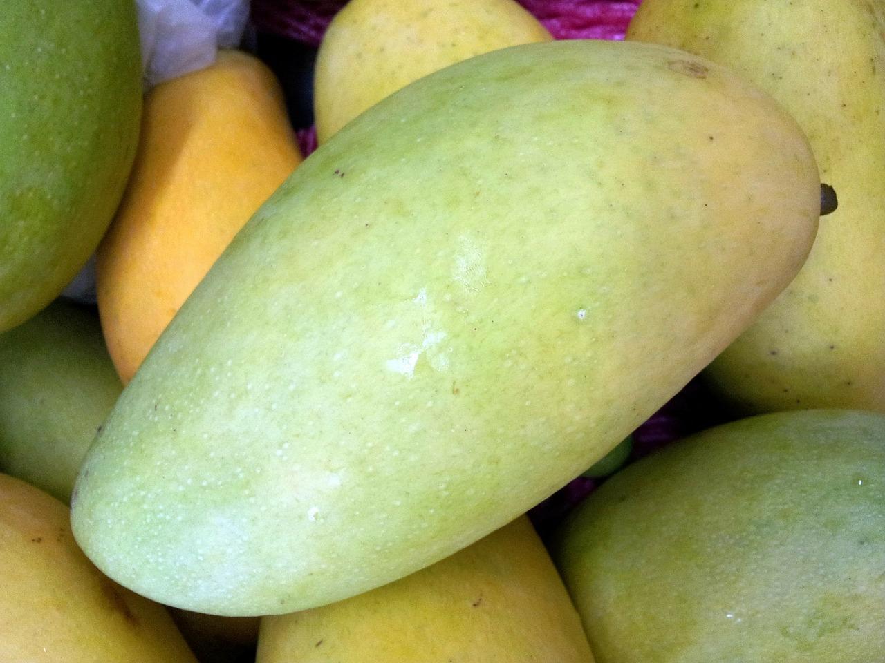 Fresh raw mango photo click