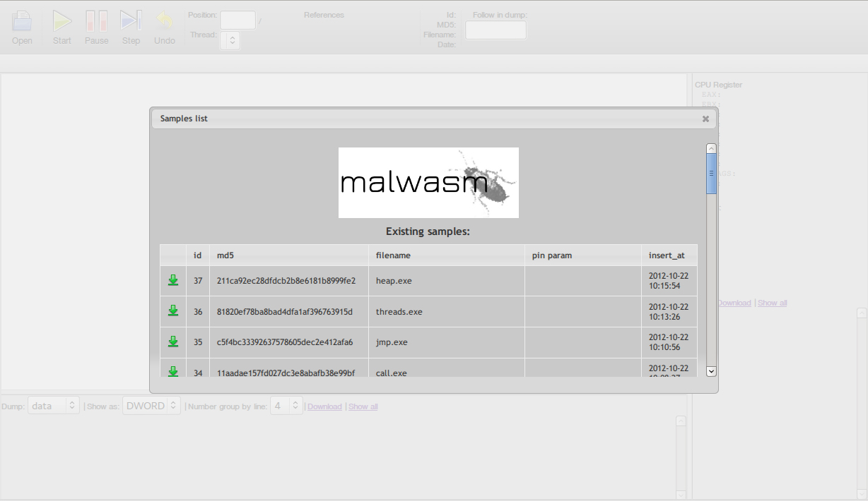 Malwasm screenshot