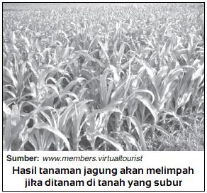 Teori Kesuburan Asli Tanah