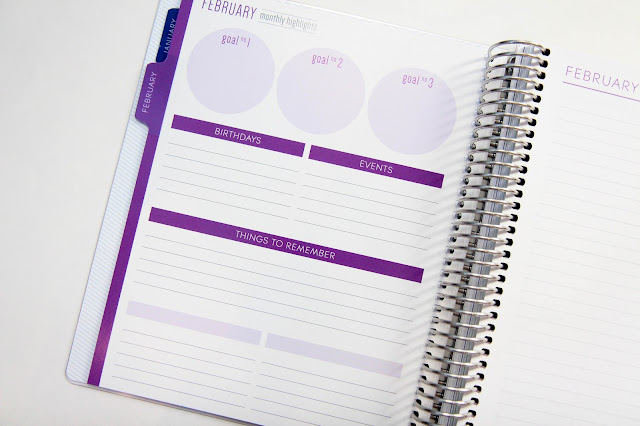 Plum Paper Planner Vertical 3 Layout Review with Blog Add-On