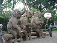 Bangunan Taman Nasional Goa Gajah