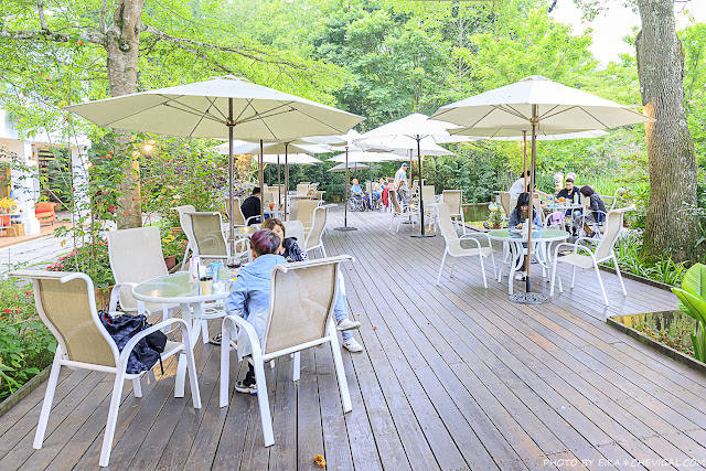 MG 3671 - 台中老字號景觀餐廳推薦,隱身山區的美麗桃花源,還有火鍋、排餐與下午茶可以享用!