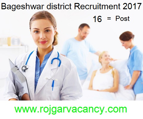 /2017/01/16-dental-assistant-community-nures-Bageshwar-district-is-located-in-the-Kumoan-region-of-Uttarakhand-India-Information.html