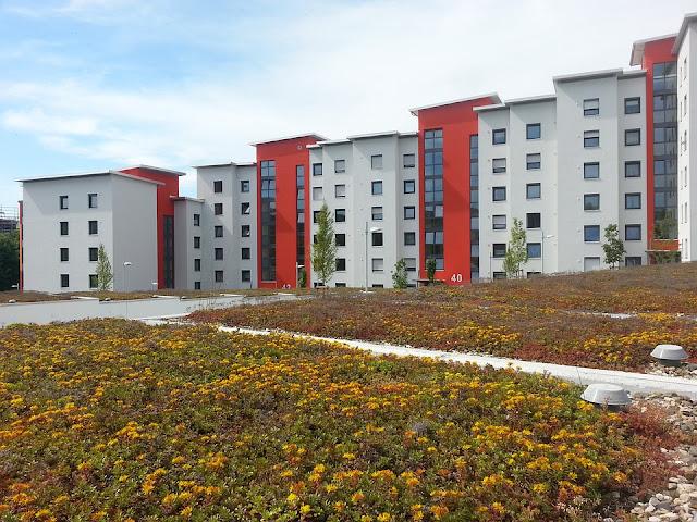 tetto-piano-ventilato-giardino-pensile