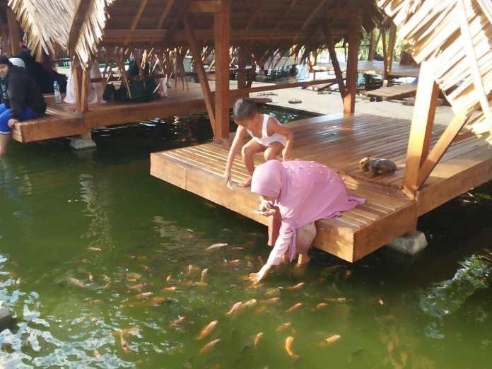 Wahana kolam renang Lhok Sijuek