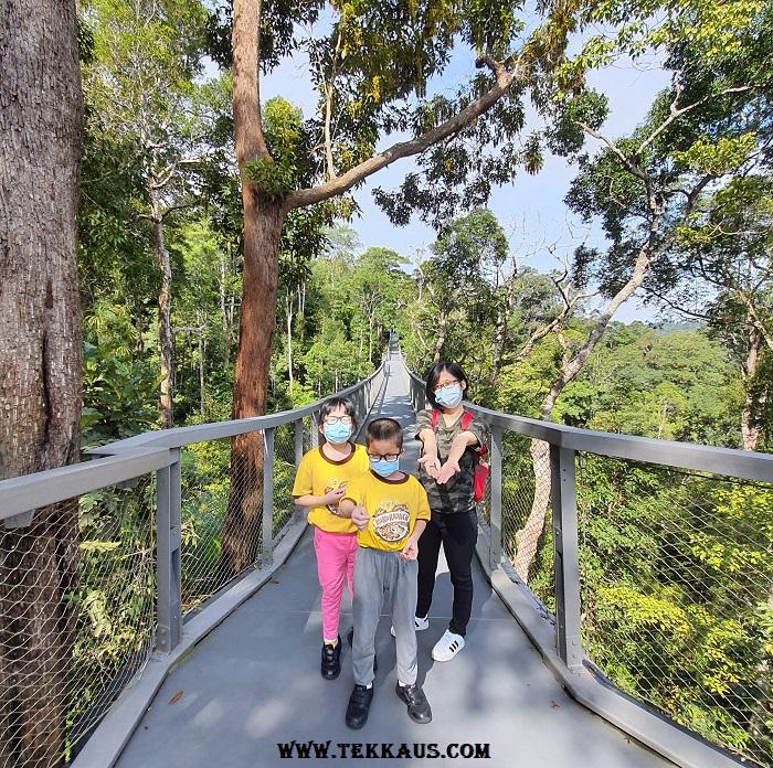 Canopy Walk Penang The Habitat