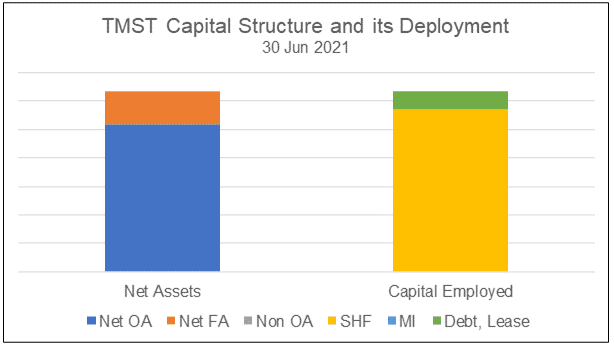 TMST Capital structure