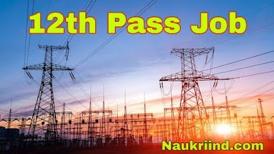 Electricity govt job