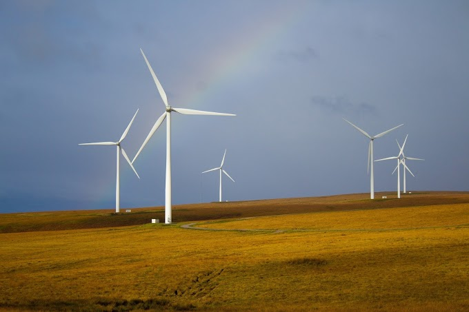 Who is leading in renewable energy?