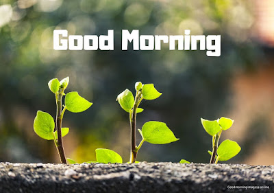 good morning images to download