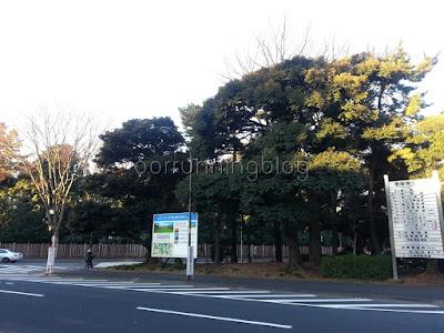 วิวสวนจิงงุไงเอ็น มองจากร้านอาหารหน้าสถานี Shinanomachi