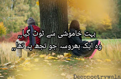 Sad Poetry  | Urdu Sad Poetry | urdu Poetry | 2 lines Poetry