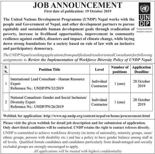 NGO INGO Job Vacancy