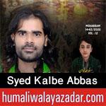 https://www.humaliwalayazadar.com/2014/10/kalbay-abbas-rizvi-nohay-2012-to-2015.html