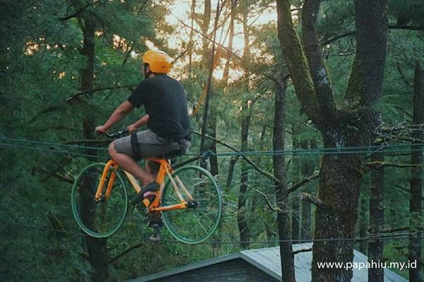 Sensasi Sepeda Gantung di Hutan Pinus Malino