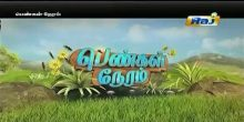 Pengal Neram 21/2/2017 Raj Tv Tamil Show For Womens