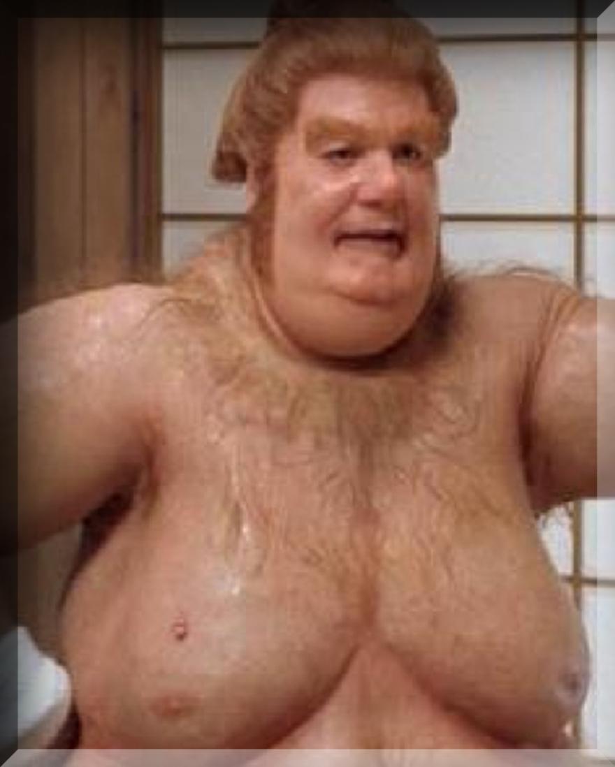 Free Porn Fat Guy 7