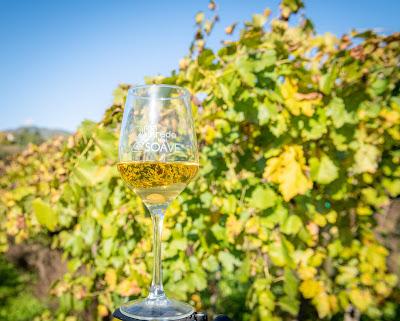 strada del vino di soave