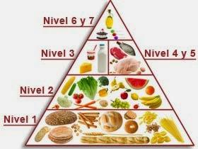 Lo ms vital Problemas nutricionales de las sociedades