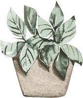 potted plant image