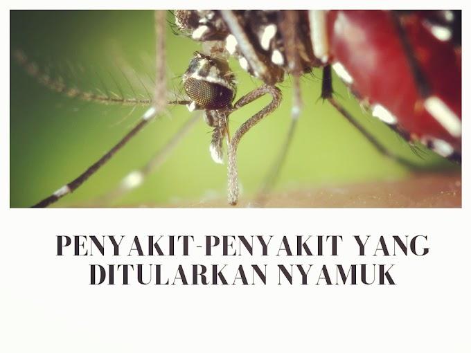 Selain DBD, Inilah Penyakit-Penyakit Yang Ditularkan Oleh Nyamuk Yang Harus Anda Tahu