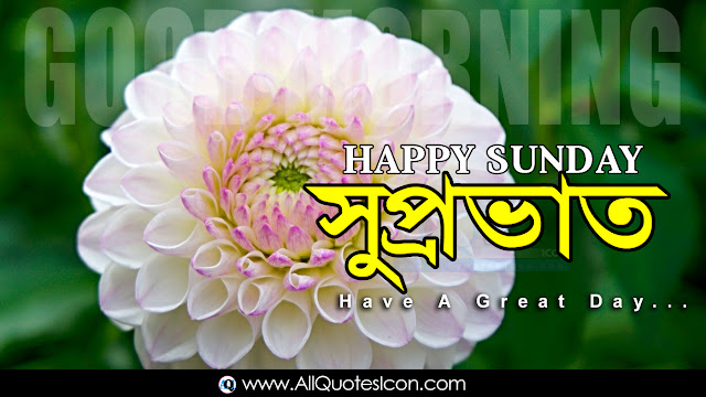 Bengali-good-morning-quotes-wishes-for-Whatsapp-Life-Facebook-Images-Inspirational-Thoughts-Sayings-greetings-wallpapers-pictures-images