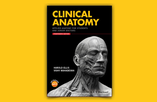 Download Clinical Anatomy: Applied Anatomy for Students and Junior Doctors PDF for free