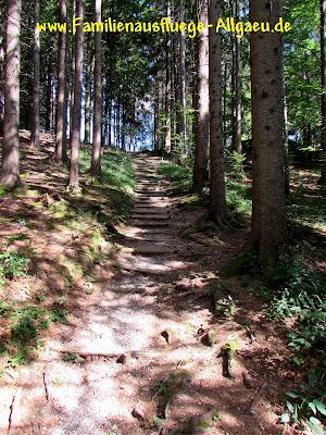Waldweg bei Roßhaupten