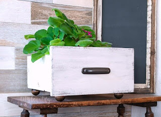 white painted drawer with plant